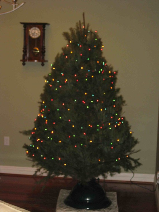 Christmas Tree Kelocity Com - Decorate Christmas Tree Without Ornaments