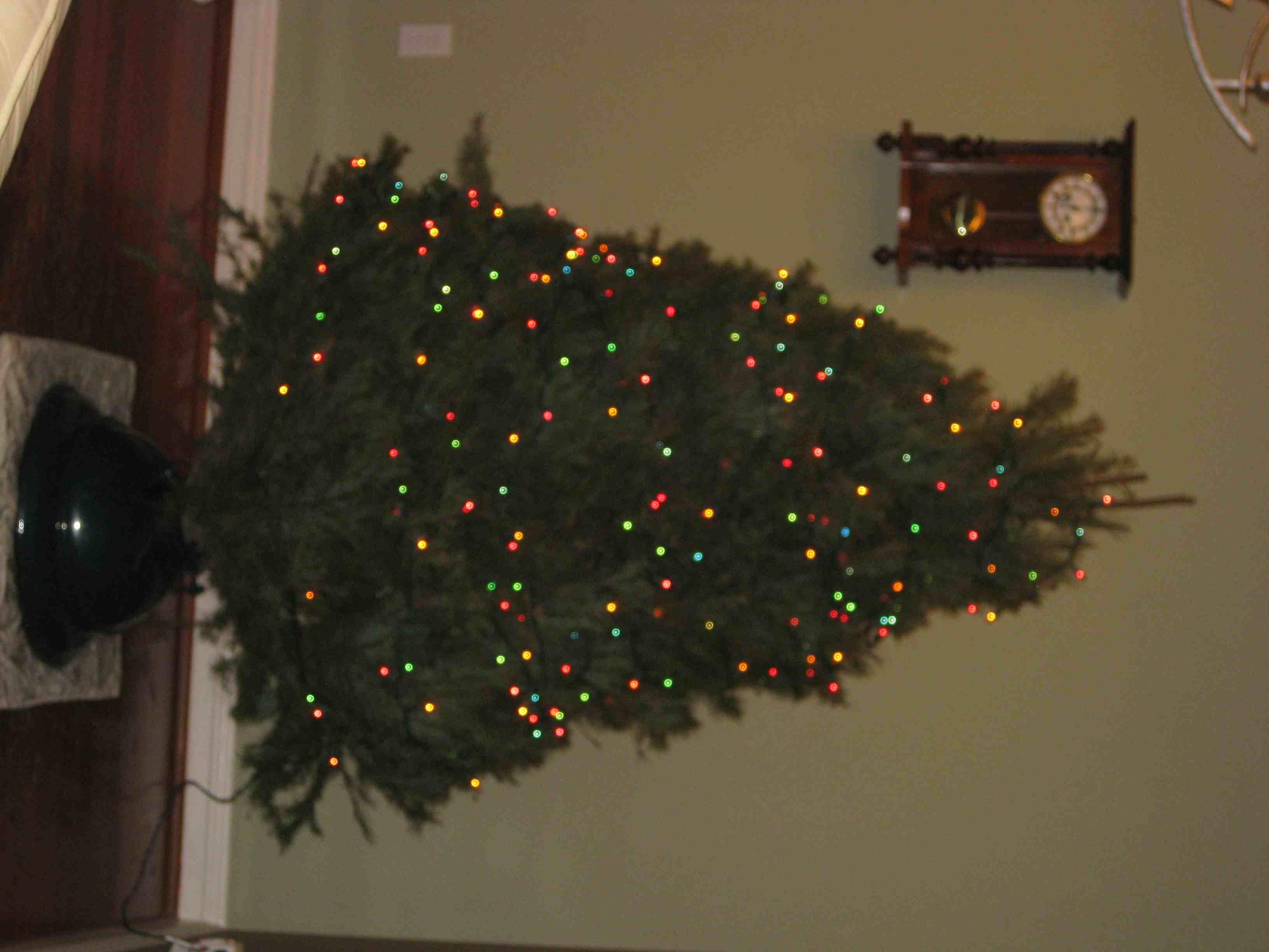 Perfect Christmas Tree Shape!