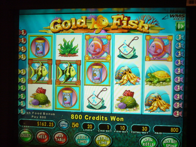 goldfish 3 slots video games
