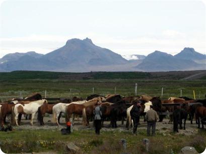 Iceland - 2009 (427)