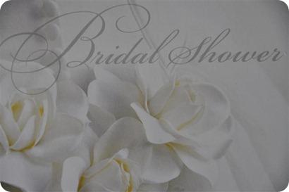 2009-04-18 Kelley Bridal Shower_0652