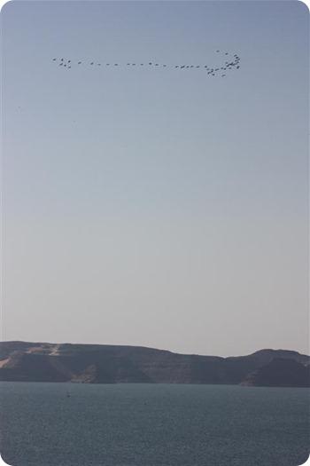 IMG_1697 (3) (Small)