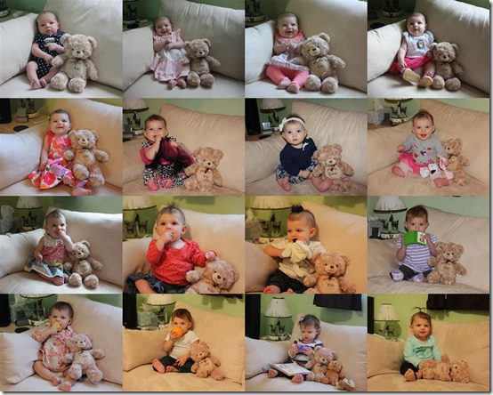 Adele Monthly Pictures (1-18 Months) - Copy